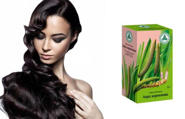 Грамотно применяя выше указанные средства на основе корня аира, можно в короткие сроки ускорить рост волос, остановить нежелательный процесс их выпадения